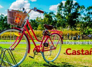 Día de la bicicleta en Castañeda portada