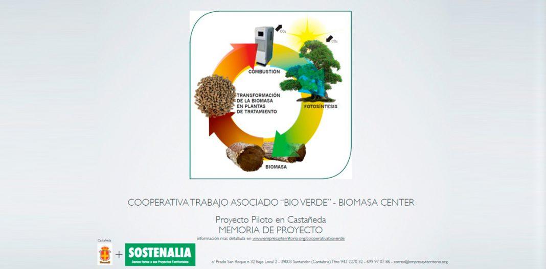 Proyecto Biomasa